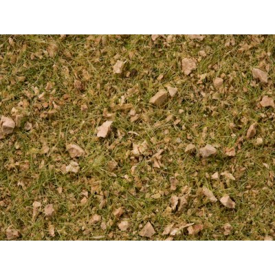 Master Grass Blend Alpine Meadow, 2.5-6m