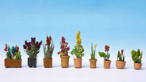 HO Ornamental Plants in Pots