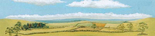 Country Landscape Medium 178mm x 559mm