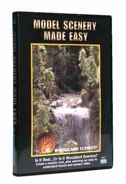 Scenery Made Easy DVD