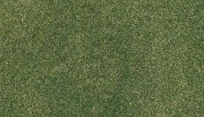 25 x 33 Green Grass RG Roll